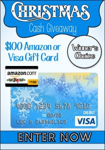 $100 Christmas Cash Giveaway! http://Whynotmom.com