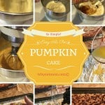 Easy as Pie PUMPKIN Cake Recipe