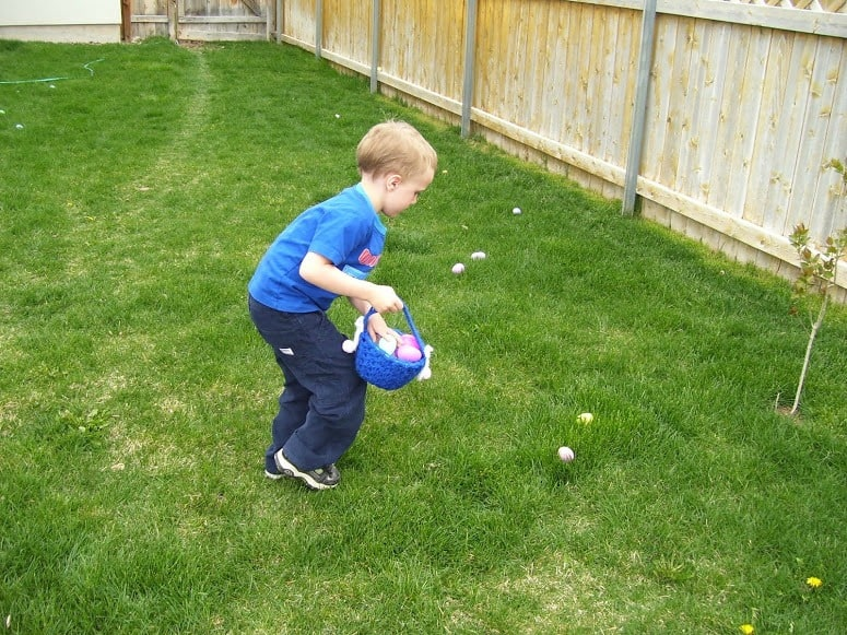 boy gather eggs in his basket at an Easter egg hunt