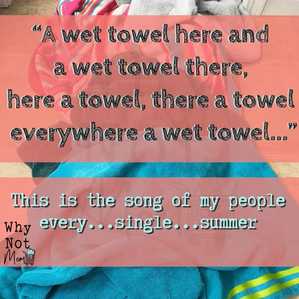 "text meme says: ""A wet towel here and a wet towel there, here a towel, there a towel, everywhere a wet towel... This is the song of my people every...single...summer."""